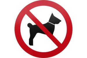 Leyland pet owners pay heavily for dogs offences