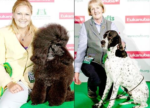 Melanie Harwood with poodle George and Glynis Marsh with pointer Zak