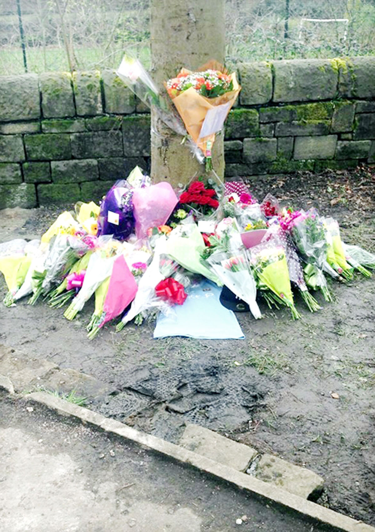 The victim, who has been named locally as 18-year-old Callum Brown, died when the car he was a passenger in smashed into a bus shelter