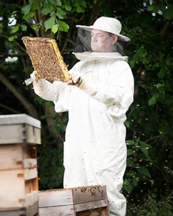 More beekeepers are needed to help curb the decline in the species