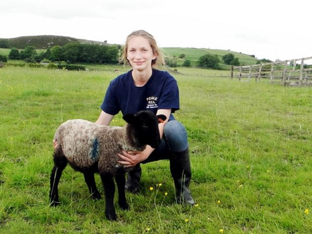 'Gruesome' East Lancs sheep attacks condemned by farmers