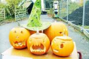 Martin Mere Wetland Centre is the place to go at half term for all the family with a host of activities and Hallowe'en fun