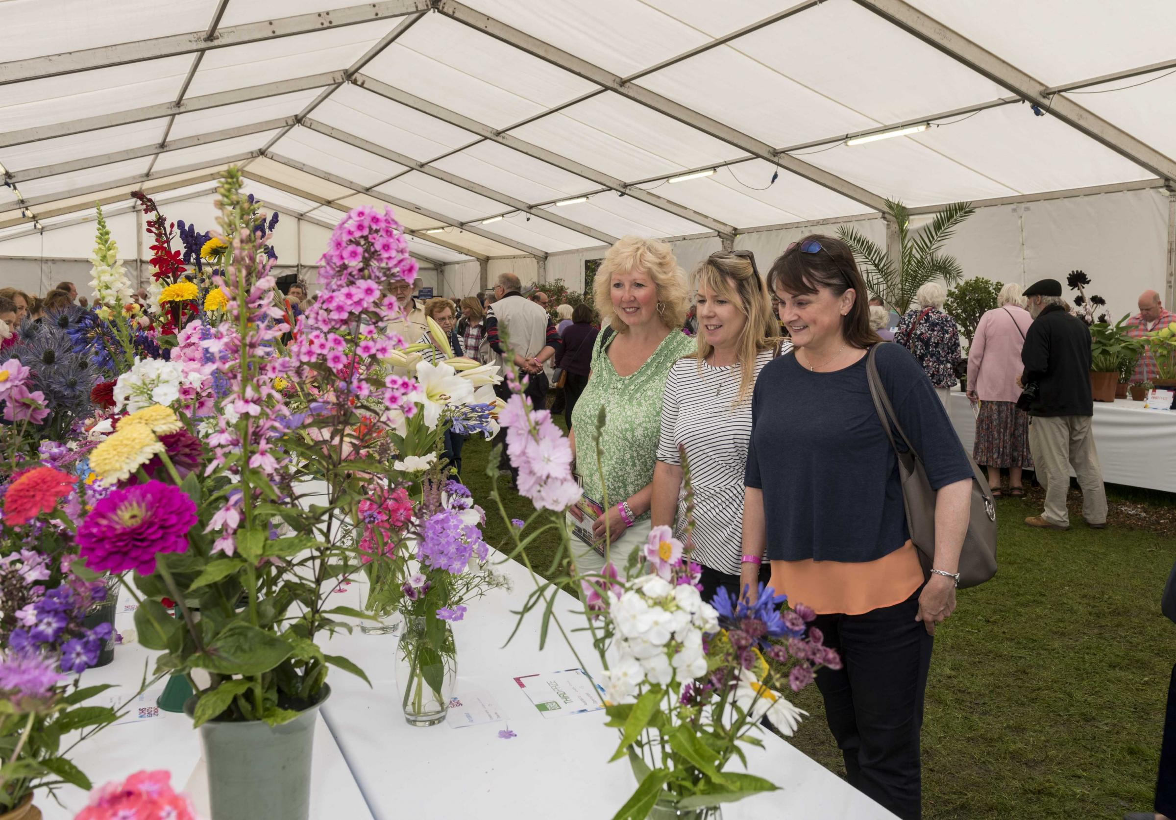 Chorley Flower Show held in Astley Park