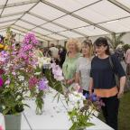 Chorley Citizen: Chorley Flower Show held in Astley Park